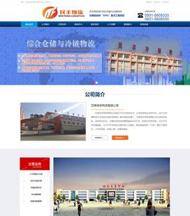甘肃民丰物流网站项目